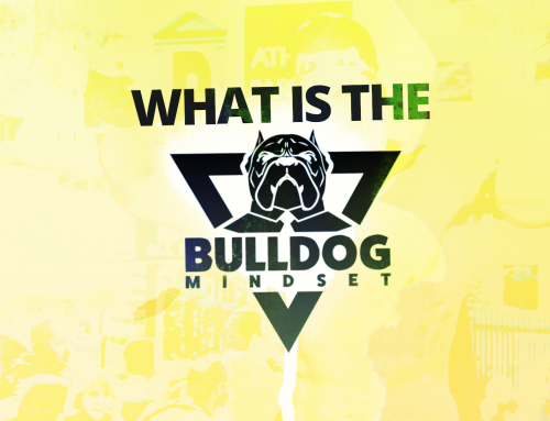 What Is The Bulldog Mindset? (Stoic Philosophy)